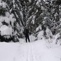 Bukowe Berdo – skitury